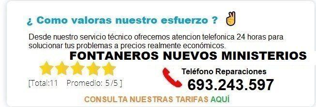 Fontanero Nuevos Ministerios precio